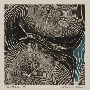 needtobreathe- rivers in the wasteland