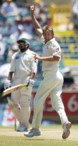 mcgrath wickets